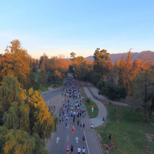 2019 Griffith Park Half Marathon & 5K